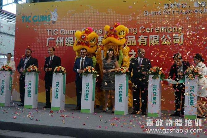 TIC中国